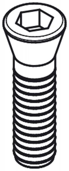 Spanndorn-Schraube für X38200